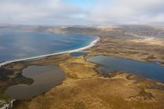 Falklands Beach | by mansellphotos dot com