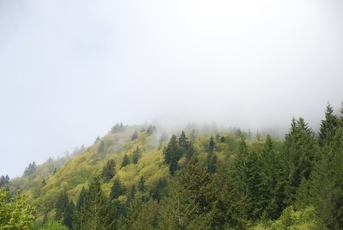 Mist on the Cascade Mountains | by Cascadian Farm