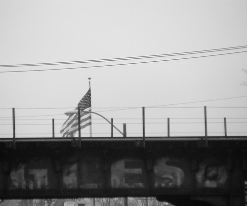 eagle and flag | by TMQ.st.louis
