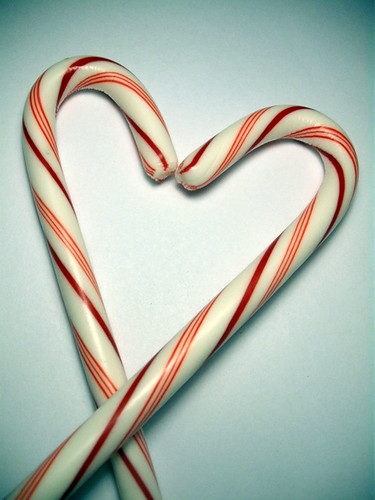 If candy canes fell in love | by blockpartypress
