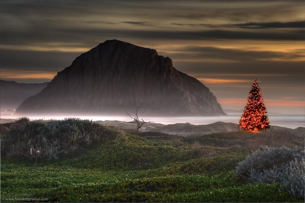 Merry Christmas Morro Bay!