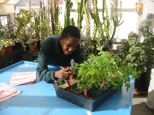 Brooklyn Academy of Science and the Environment High School | by Brooklyn Botanic Garden