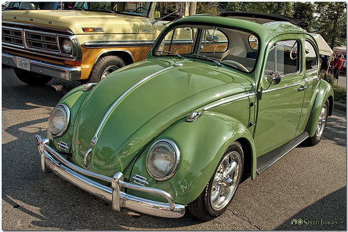 Little Green Bug | by Mark O'Grady - Proudly Serving Millions of Viewers