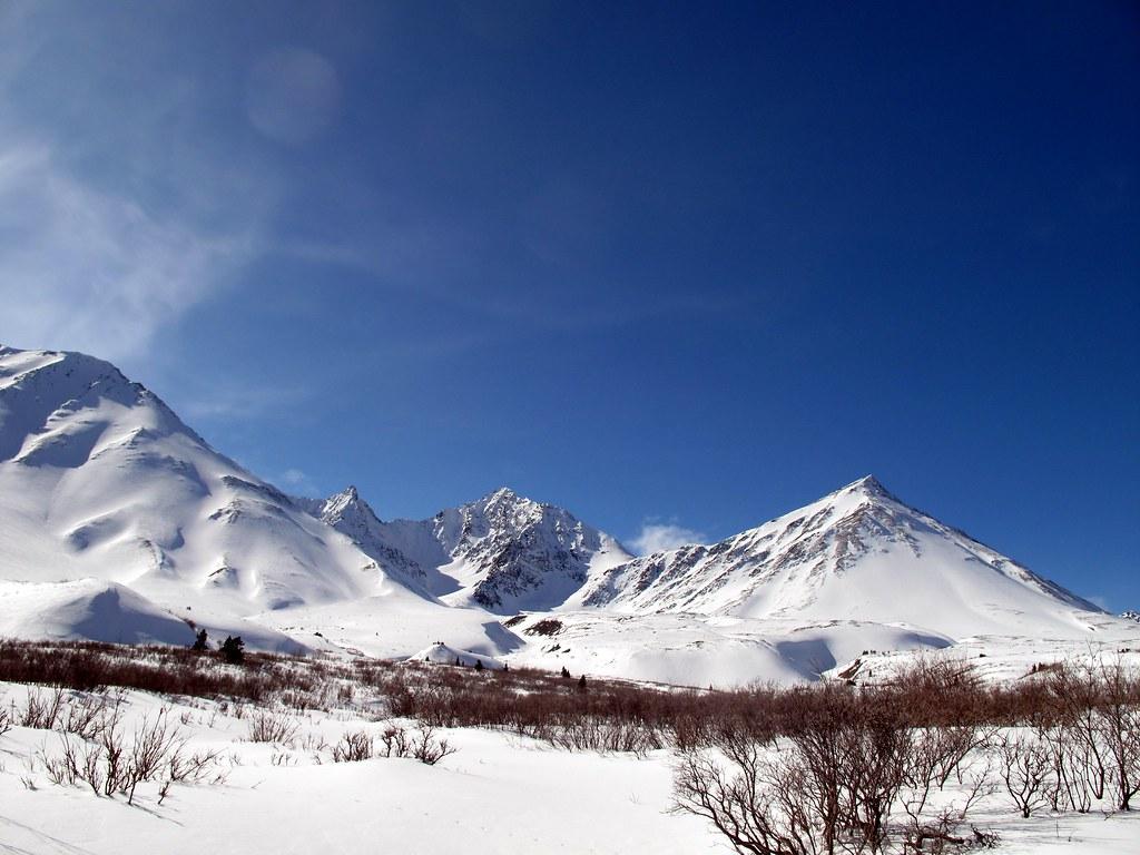Auriol trail, Kluane