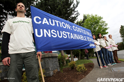 Calling Out Costco Sustainable Seafood | by Greenpeace USA 2016