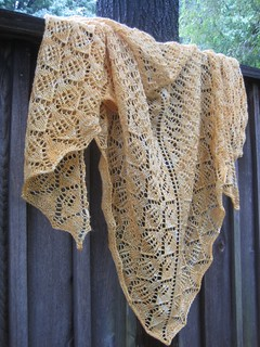 Aug22-Shawl5 | by crazyknittinglady