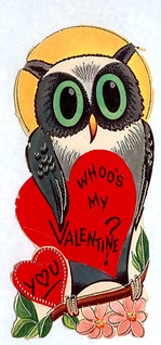 Whoo's my valentine? | by pageofbats