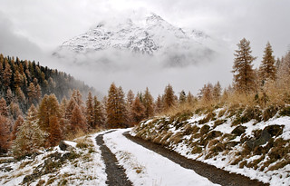 Road to winter | by Alpine Light & Structure