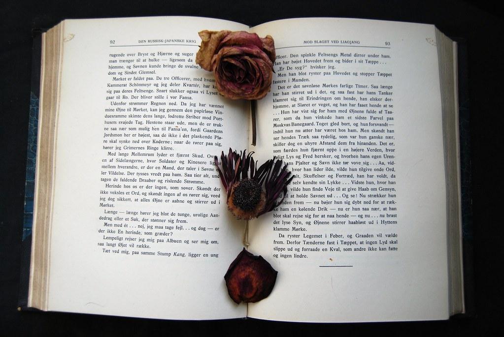 Open Book Series