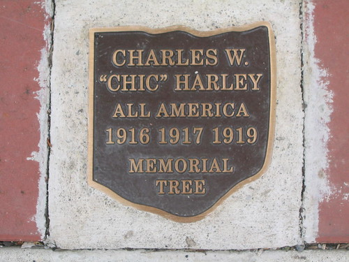 "Charles ""Chic"" Harley All America Memorial Tree 
