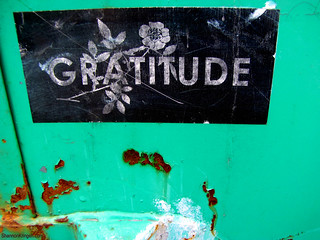 gratitude and rust | by shannonkringen