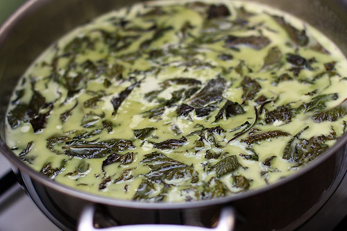 steeping mint for ice cream | by David Lebovitz