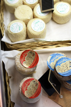 goat cheeses | by David Lebovitz
