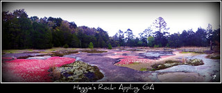 Tour of Heggie's Rock Nature Preserve - Appling, GA | by Stacie Wells, Market House Realty