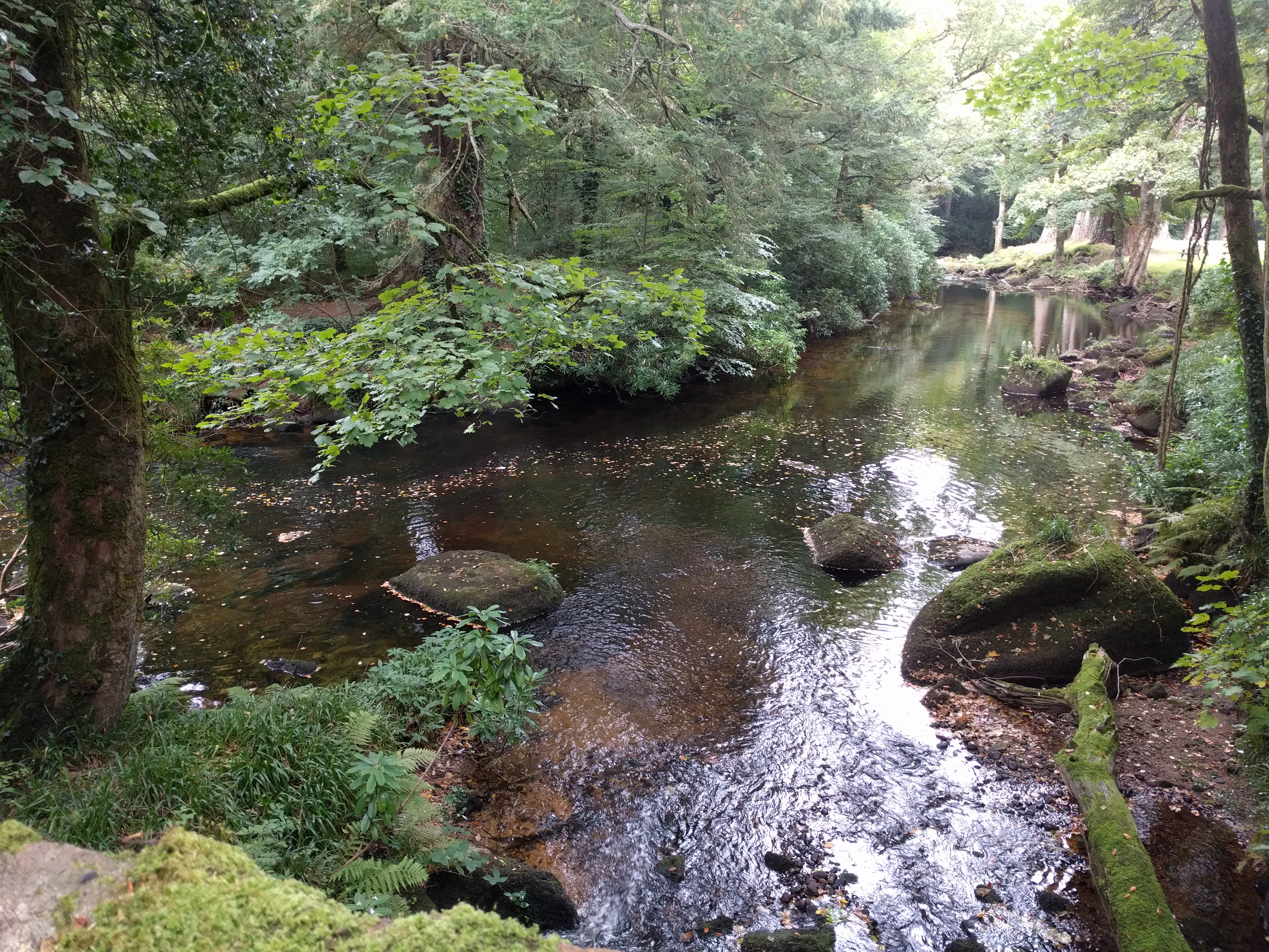 River Teign #sh #twomoorsway