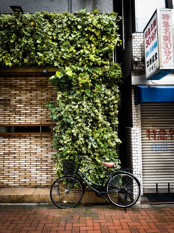 Tokyo - iPhone7 - DNG app Lightroom mobile