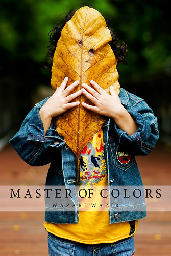 Master of Colors | New eBook | Unveiled The MASK | by wazari