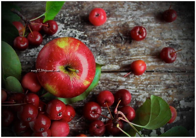 ...autumn apples