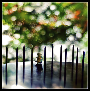 finally a fence on a friday.. | by PNike (Prashanth Naik..back after ages)