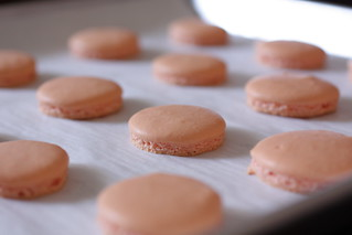 baked macarons | by Madison Bistro