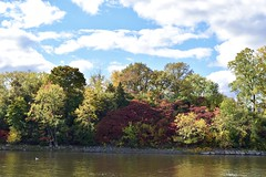 Fall at Île-de-la-Visitation park