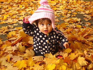 Baby in the Leaves | by AJ Brustein