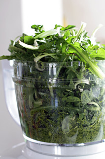 food processor pesto | by David Lebovitz