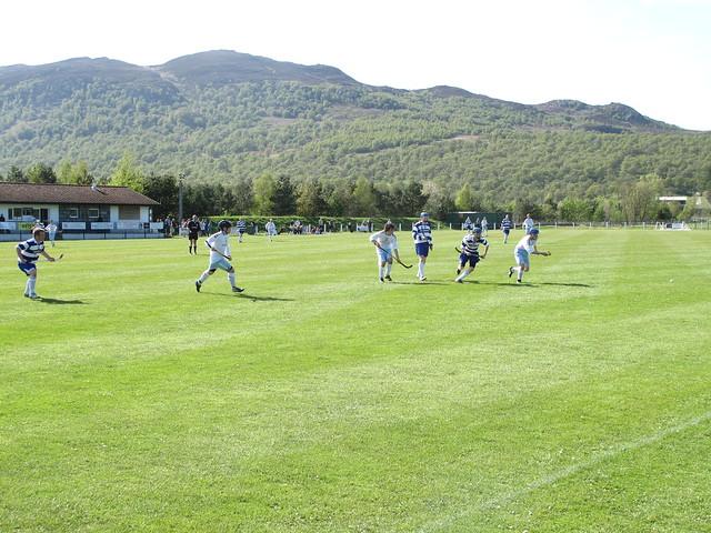 Shinty match - Newtonmore vs Skye Camanachd