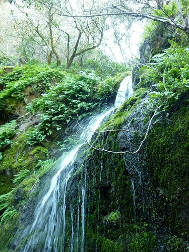 Fairway Waterfall | by literarymom