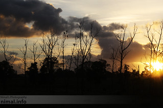 Sunrise in Taree | by Nimal S
