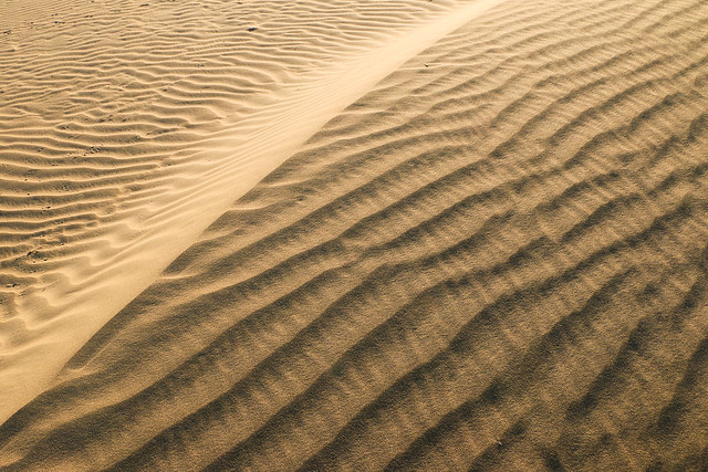 Wind ripples of Khuri sand dunes, near Jaisalmer, India ジャイサルメール、クーリー砂丘の風紋