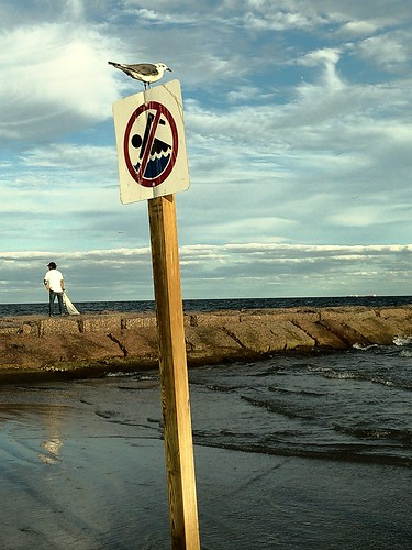 No swimming