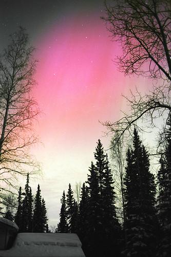 Pink Glow (film)