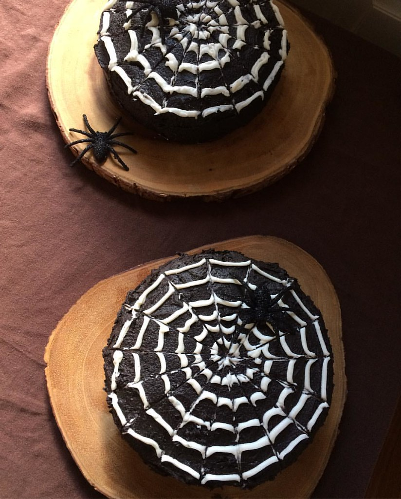 I fear we have a spider infestation occurring just in time for our Halloween party tonight. #timetomove #burndownthehouse #ohwaittheyareplastic #happyhalloween #spiders