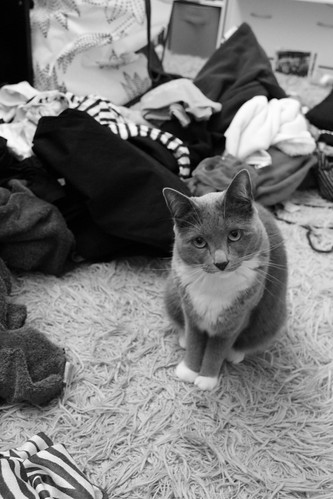 No seriously, clean your room. | by Katherine Pagan