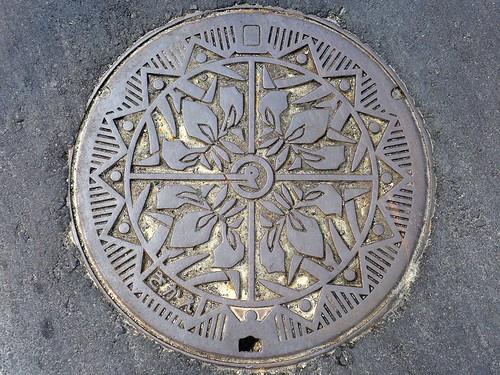 Sakae Nigata, manhole cover (新潟県栄町のマンホール)