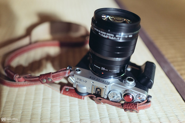 Olympus M.ZD 25mm F1.2 | 01