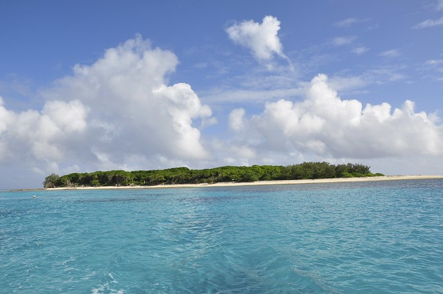 Lady Musgrave Island (153)