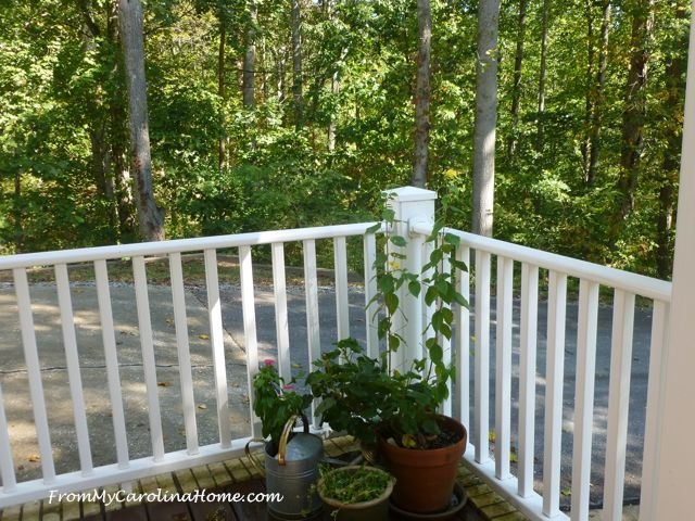 Autumn On the Veranda at From My Carolina Home