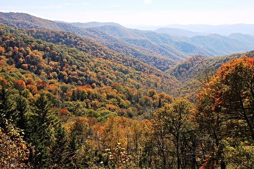 20161105_Fall_in_the_Smokies