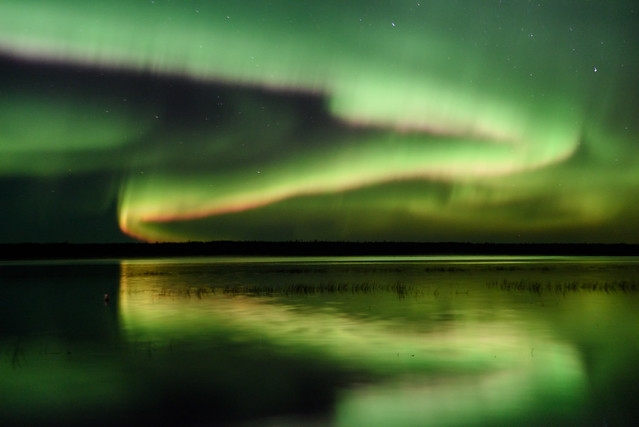 Northern Lights DSC_3441