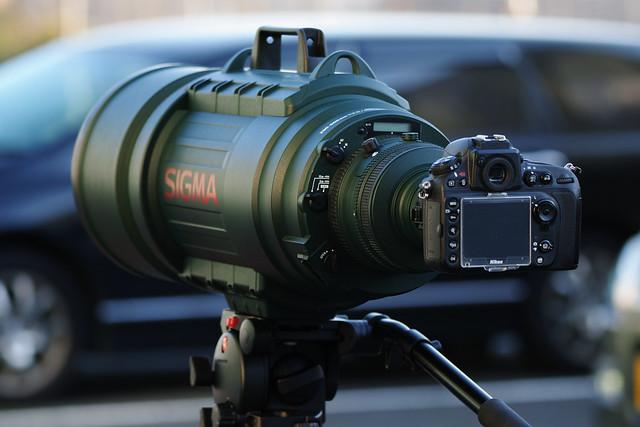 20161021_10_SIGMA sd Quattro + 150-600mm F5-6.3 DG OS HSM C015