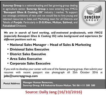 marketing-sales-Job