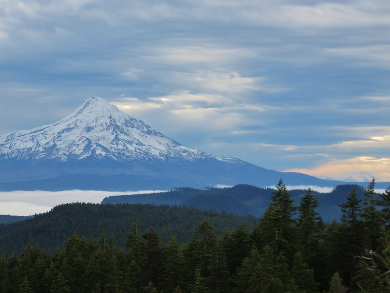 Mt. Hood and Mt. Jefferson from Green Point Mountain