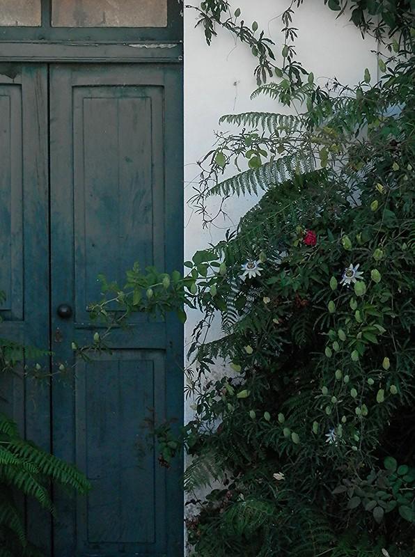 Puerta de la casa abandonada