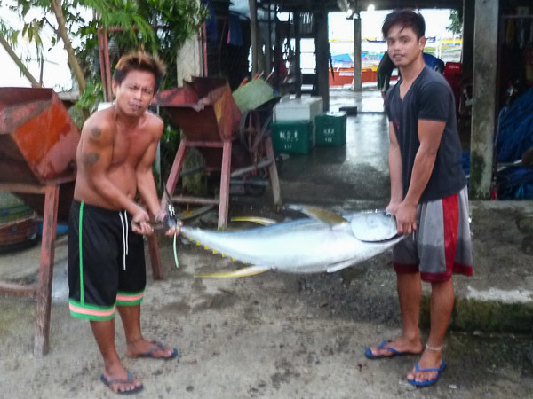 100 Kilo Yellowfin Tuna