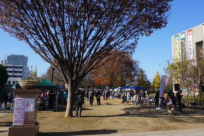 つつじ公園(練馬)
