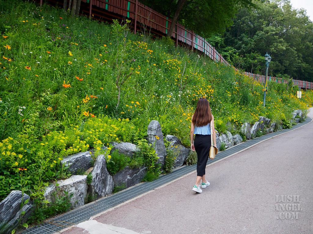 where-to-go-korea