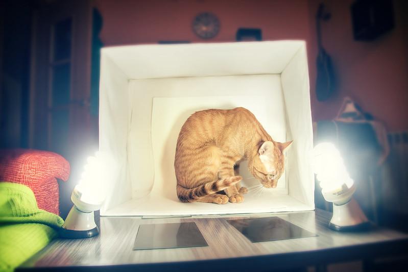 Fiumi Lightbox
