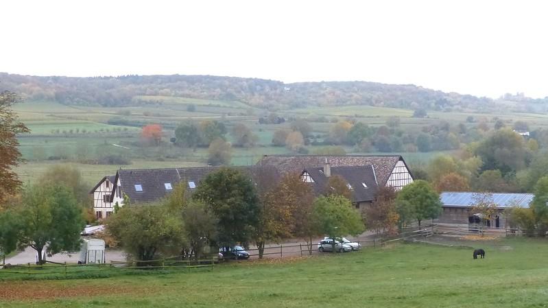 Layenmühle bei Groß-Winternheim